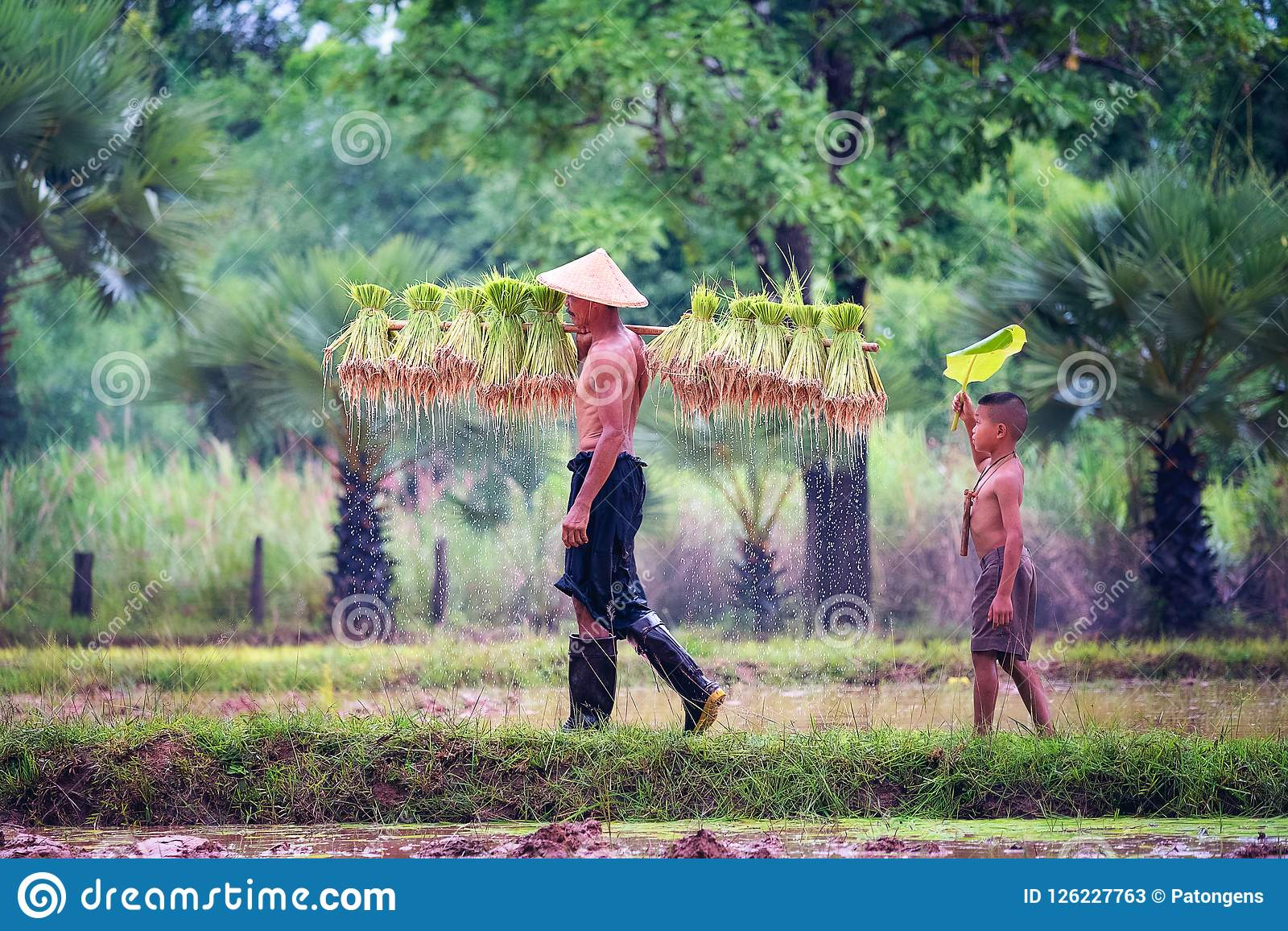 Forma de vida de la gente asiática suroriental en el campo Tha del campo
