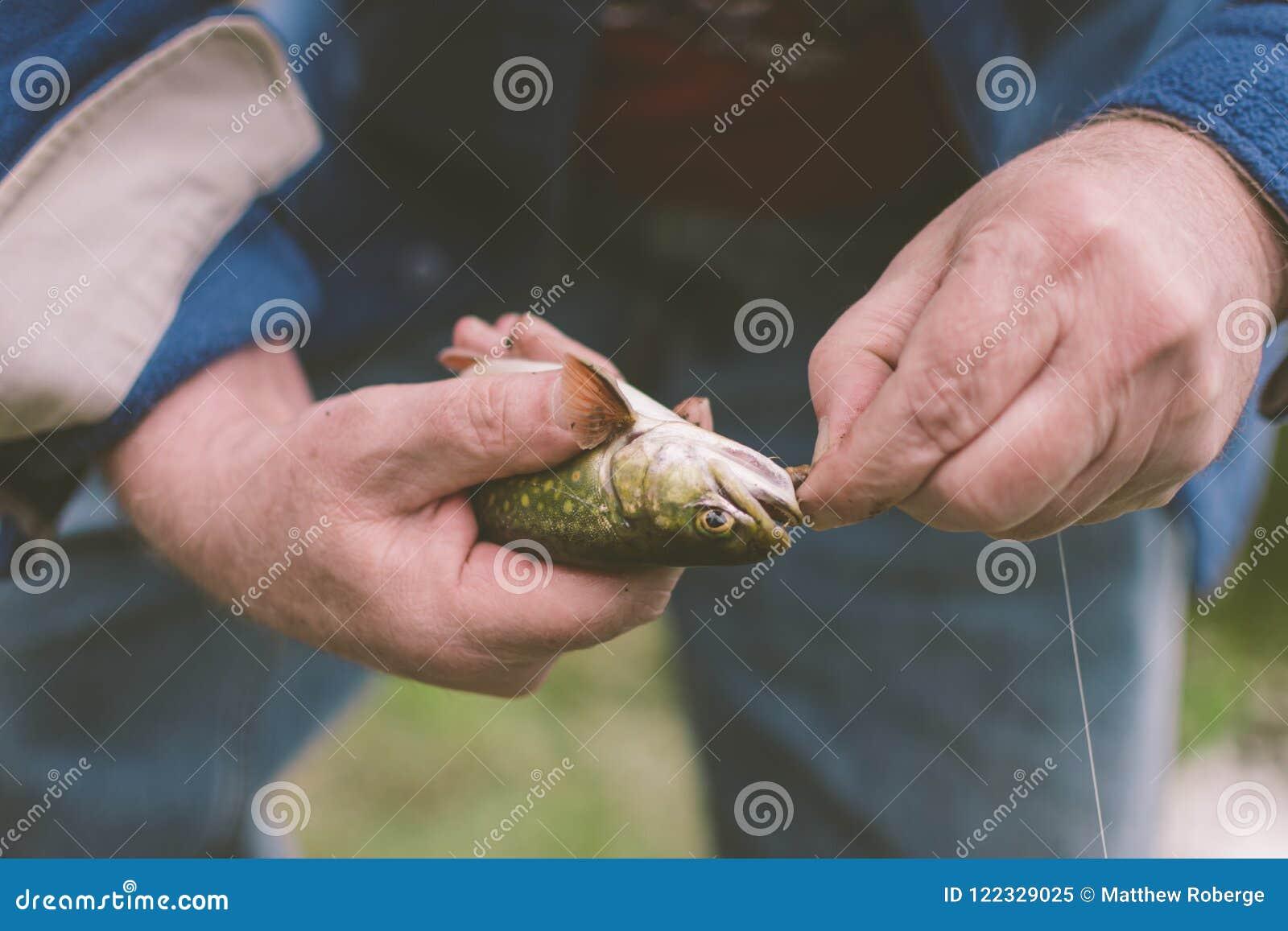 Forma de vida de la pesca de la captura y del lanzamiento