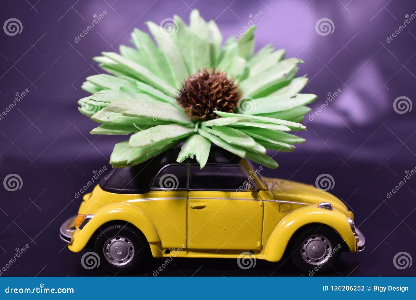 Forma de vida y coches del hippie