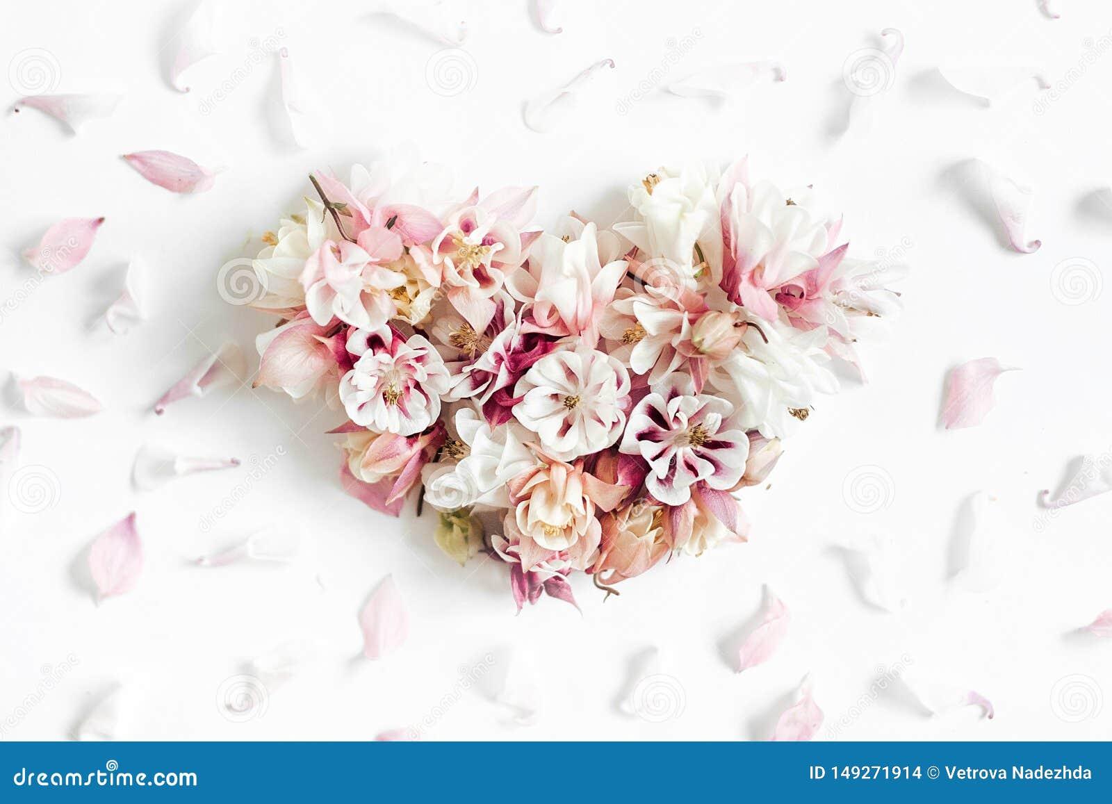 Forma del cuore fatta dei fiori su fondo bianco