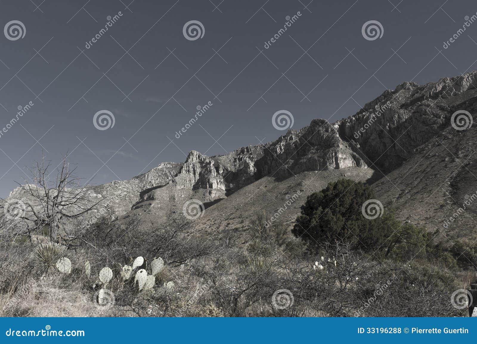 Formación masiva de la piedra caliza de EL Capitan