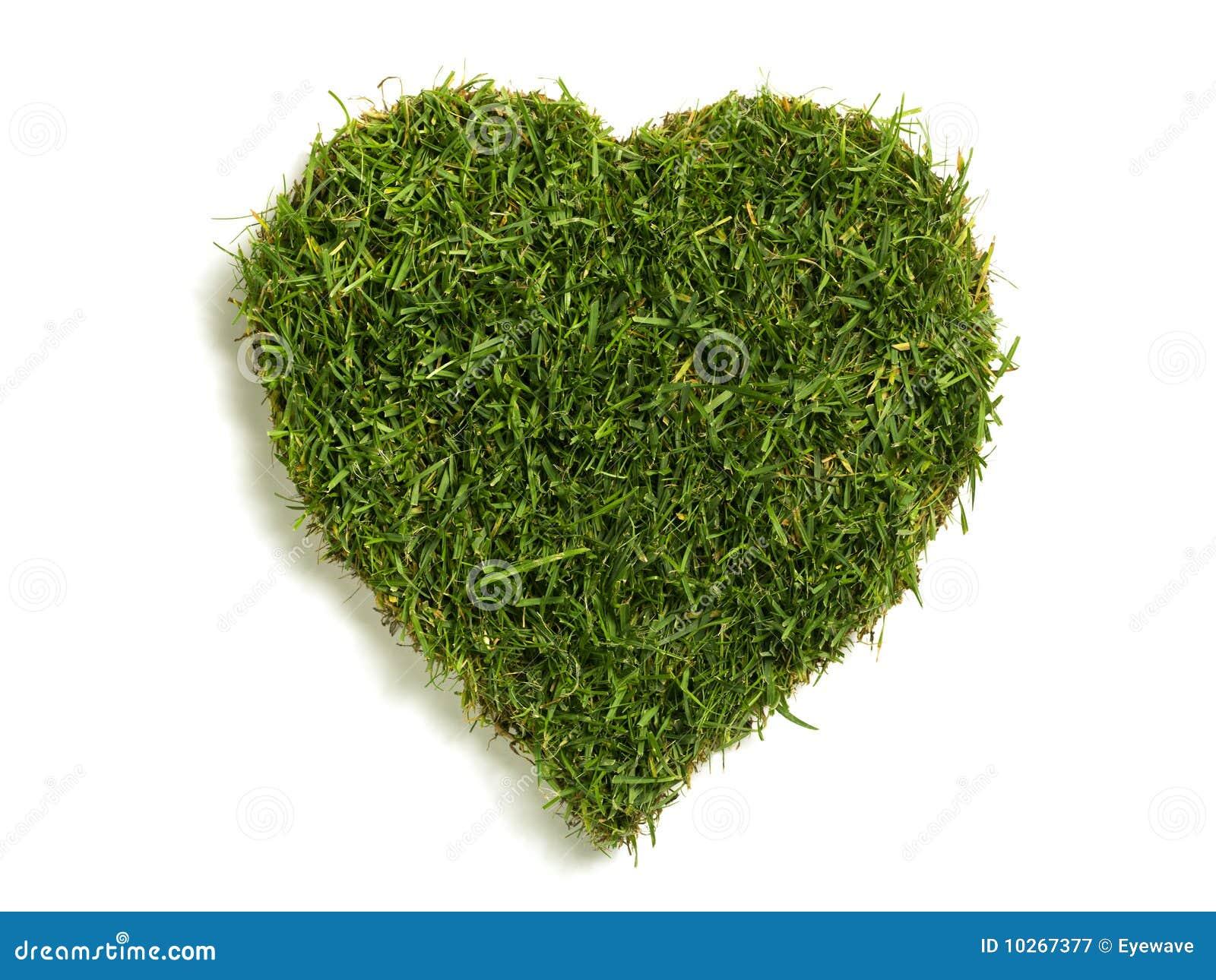 Formad sod för hjärta lawn