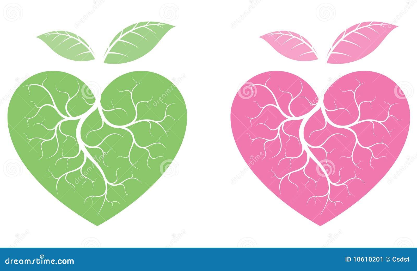 Formade hjärtaväxter