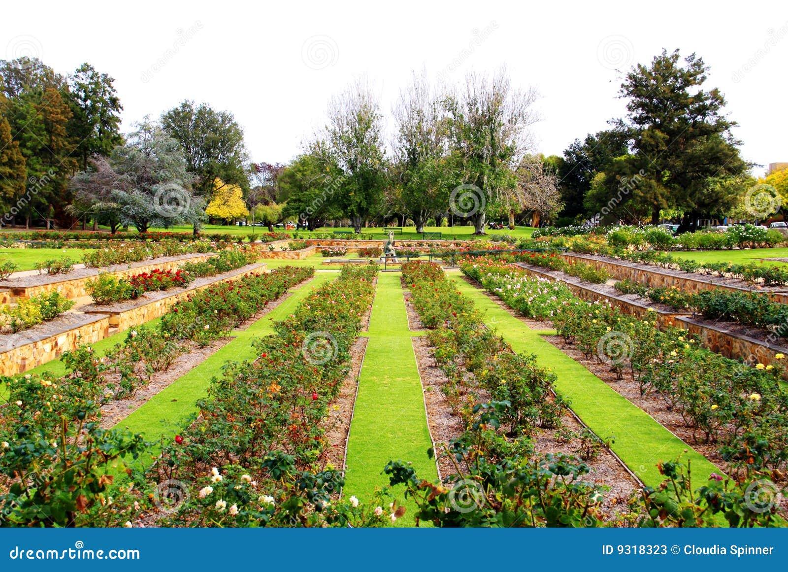 Formal rose garden adelaide australia stock image for Adelaide gardens