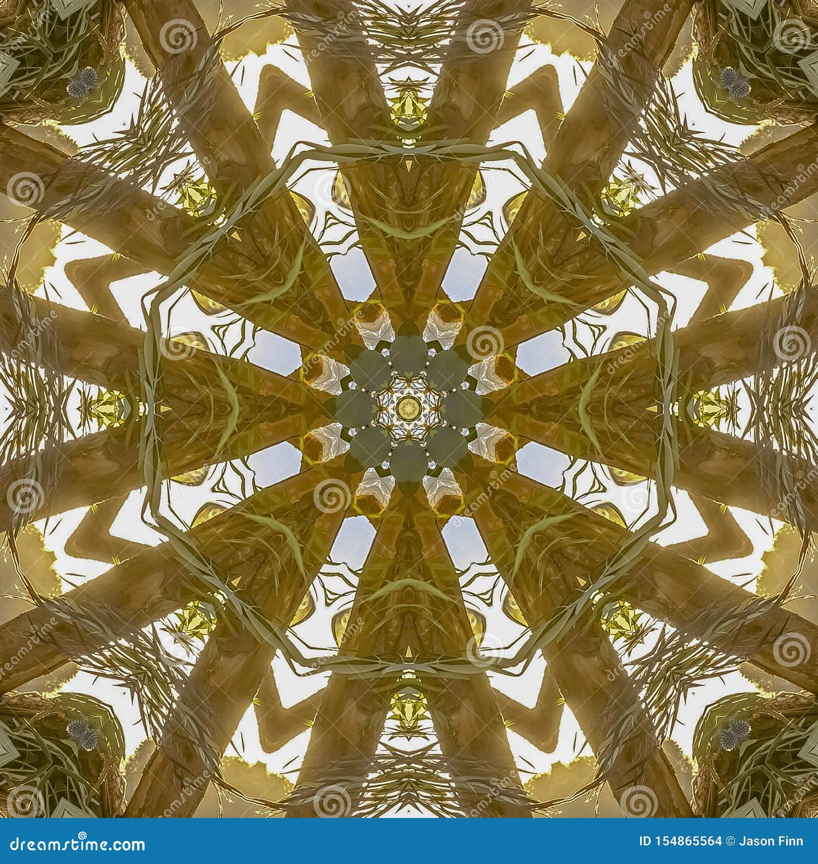 Formas angulares salvajes del cuadrado de un centro de flores que muestra solamente las hojas y los troncos