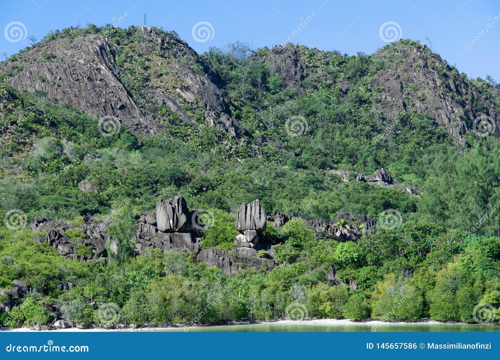 Formazione di pietra della lava, monolito, nel parco naturale dell isola del curieuse, le Seychelles
