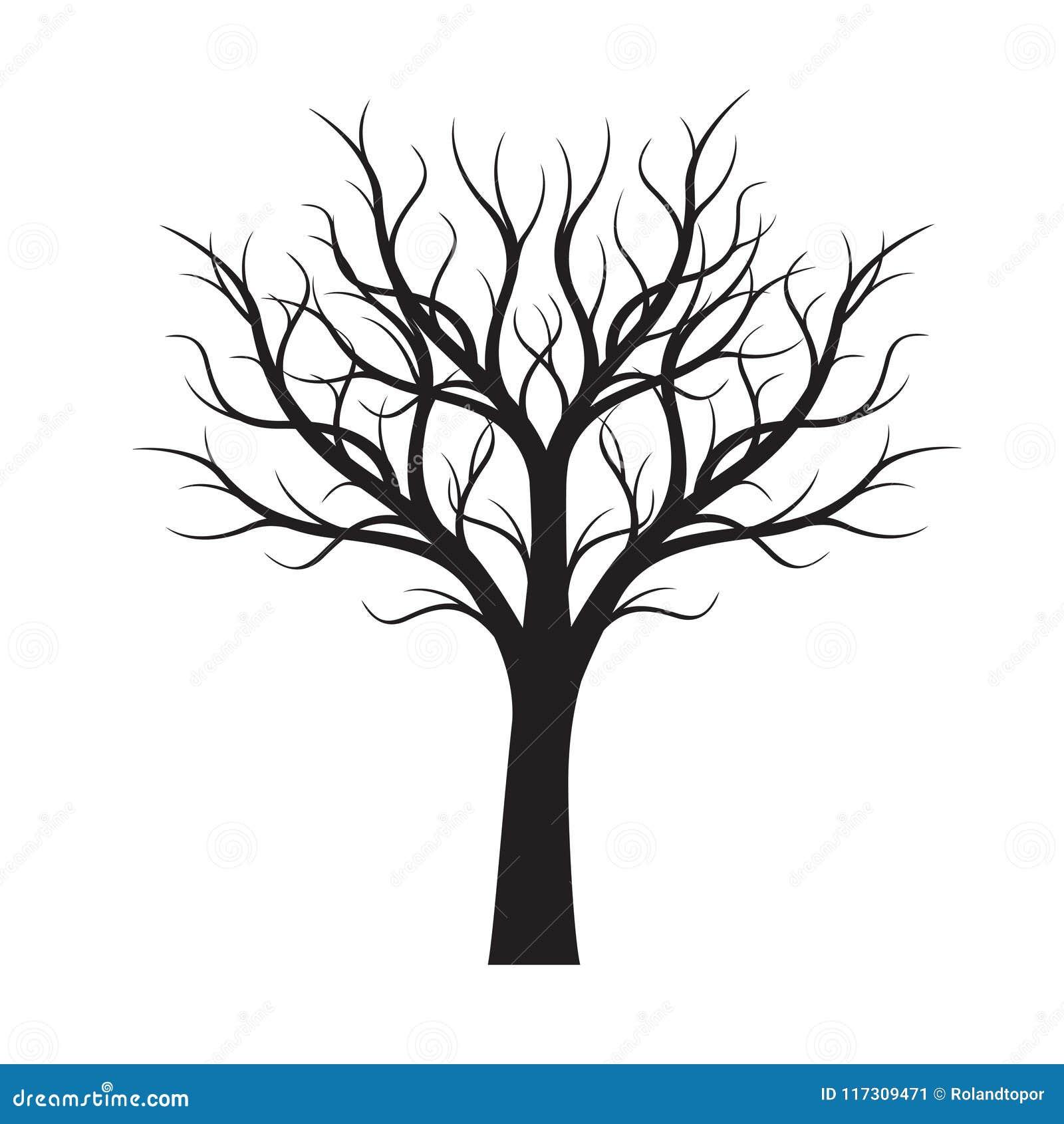 Forme d 39 arbre nu noir illustration de vecteur illustration - Dessin arbre nu ...