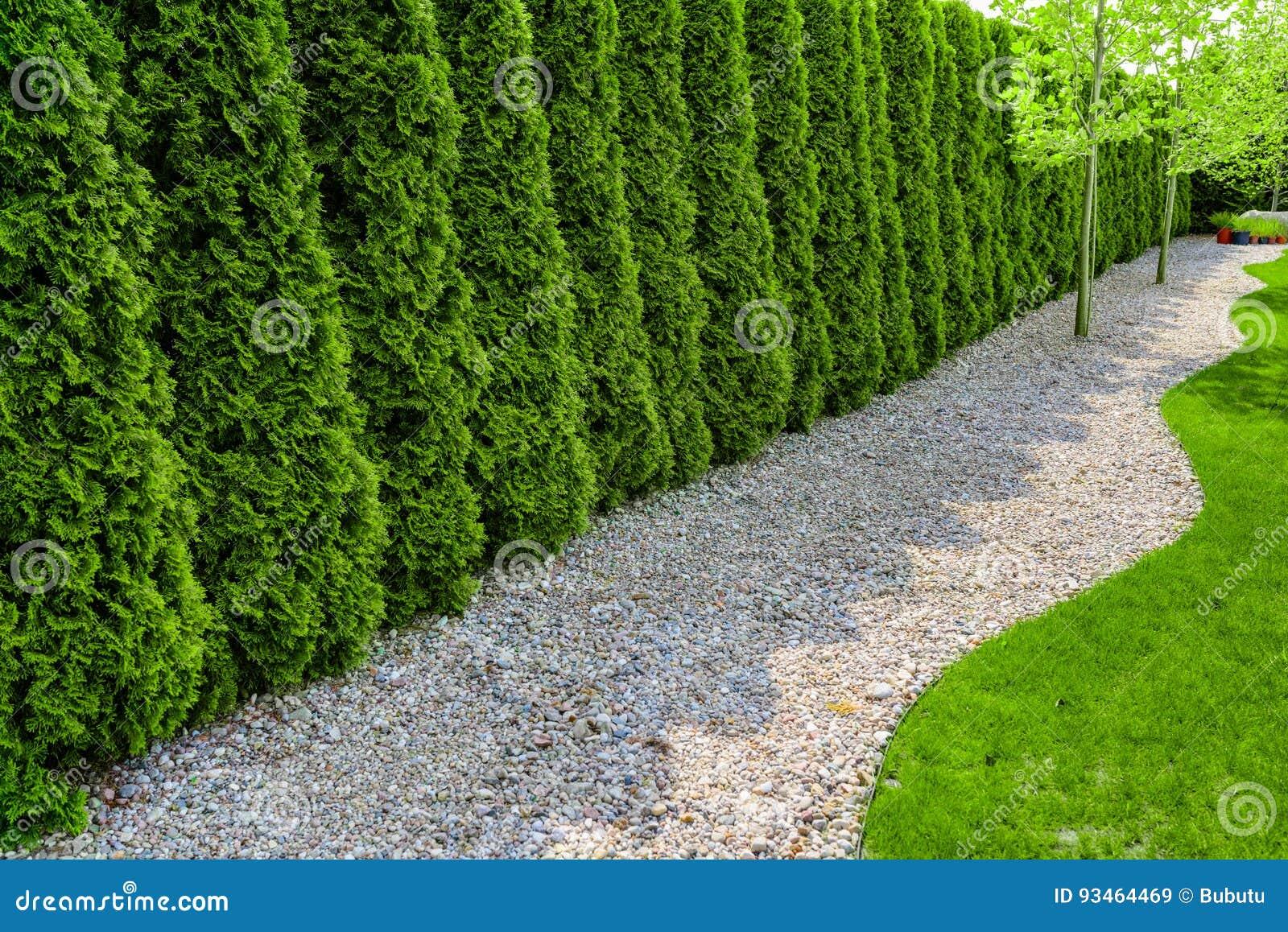 evergreen gazon gazon artificial ornamental highland with evergreen gazon perfect pcs gazon. Black Bedroom Furniture Sets. Home Design Ideas