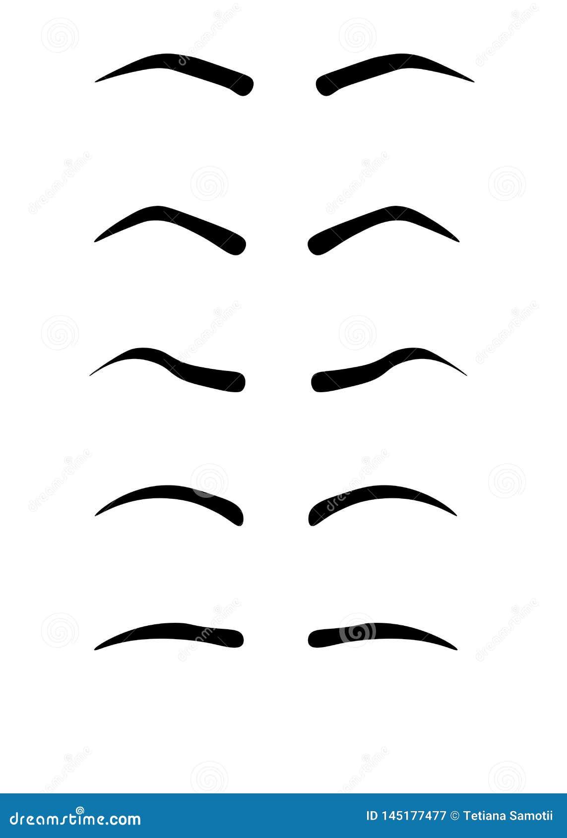 Formes de sourcil de Web Divers types de sourcils Type classique et autre garniture Illustration de vecteur avec l épaisseur diff