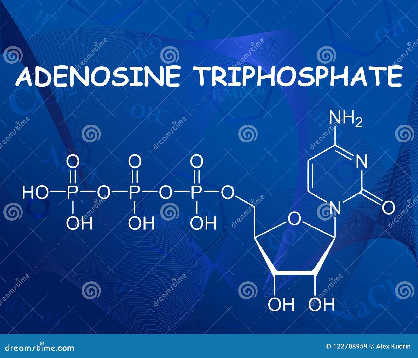 Formula chimica dell adenosina trifosfato