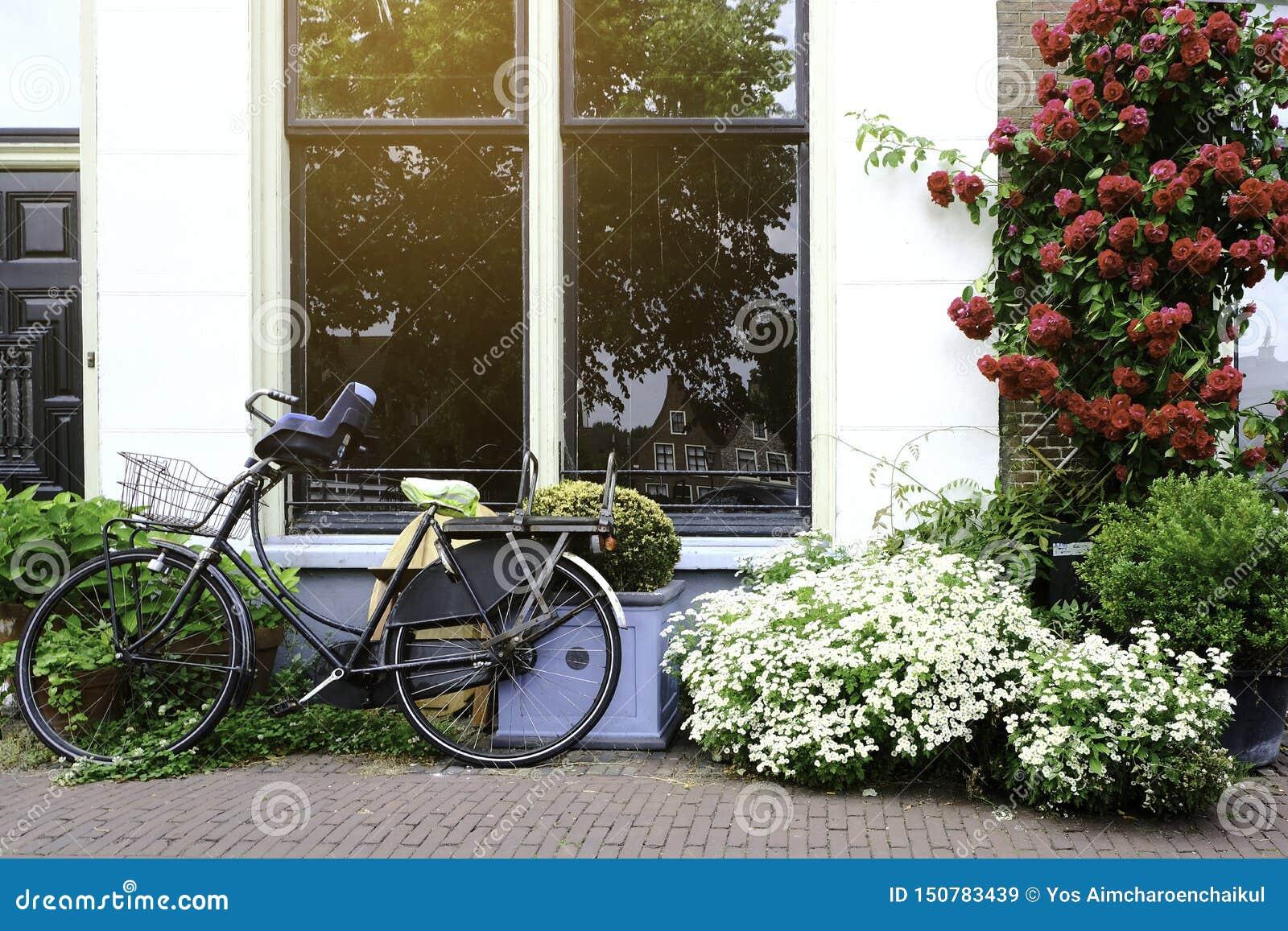 Forntida cyklar parkerade framme av huset Cykel som lutar på de stora fönstren på vägrenen