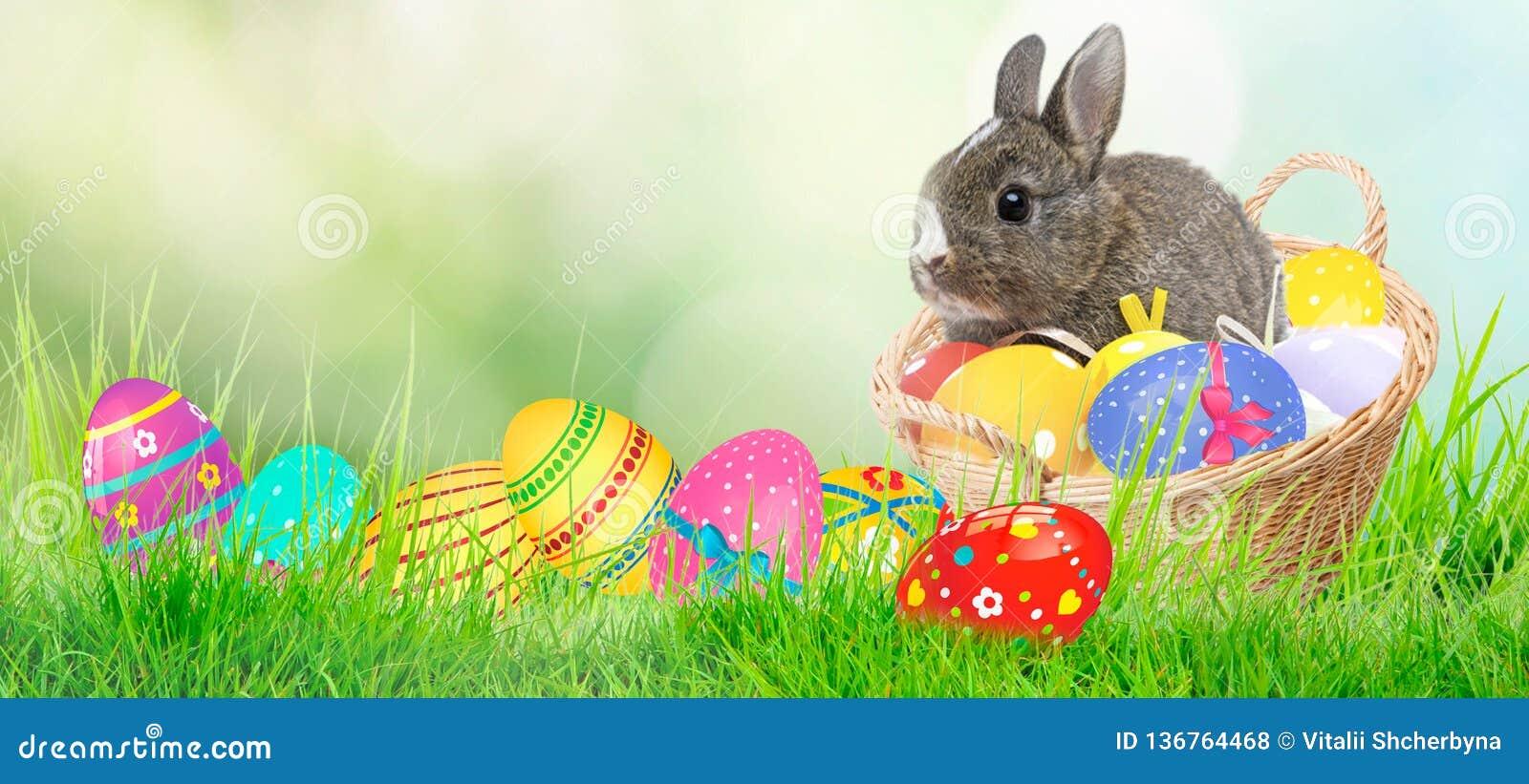 2 forsują pisklęca pojęcia Easter jajek kwiatów trawa malujących umieszczających potomstwa Zielona trawa, Easter jajka i sieć szt