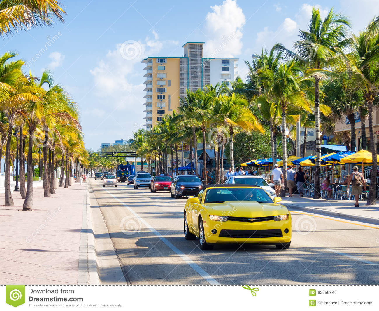 Business plan writers fort lauderdale