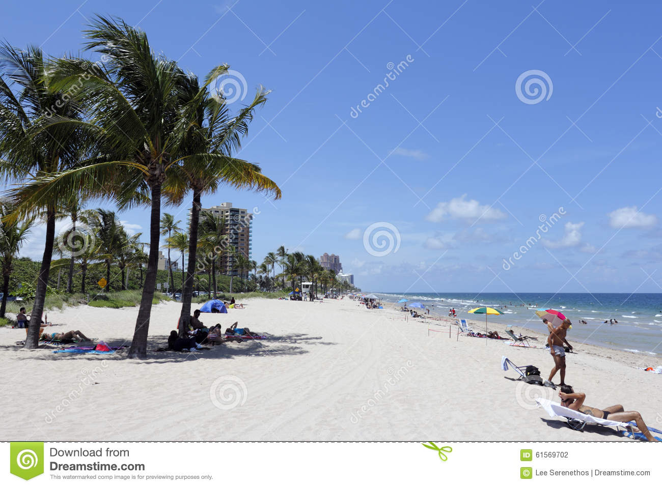 lauderdale women Find 338 listings related to women in fort lauderdale on ypcom see reviews, photos, directions, phone numbers and more for women locations in fort lauderdale, fl.