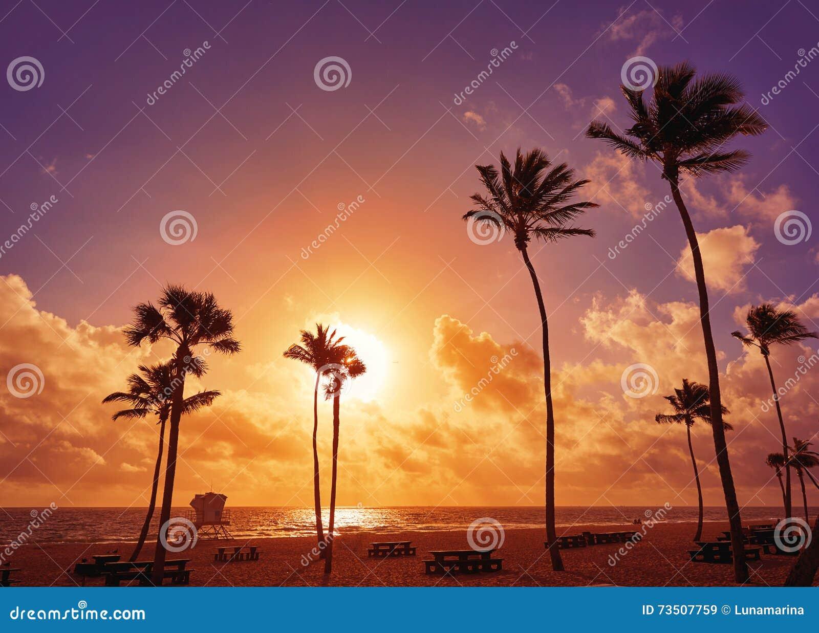 Fort Lauderdale Beach Sunrise Florida Us Stock Image Image Of