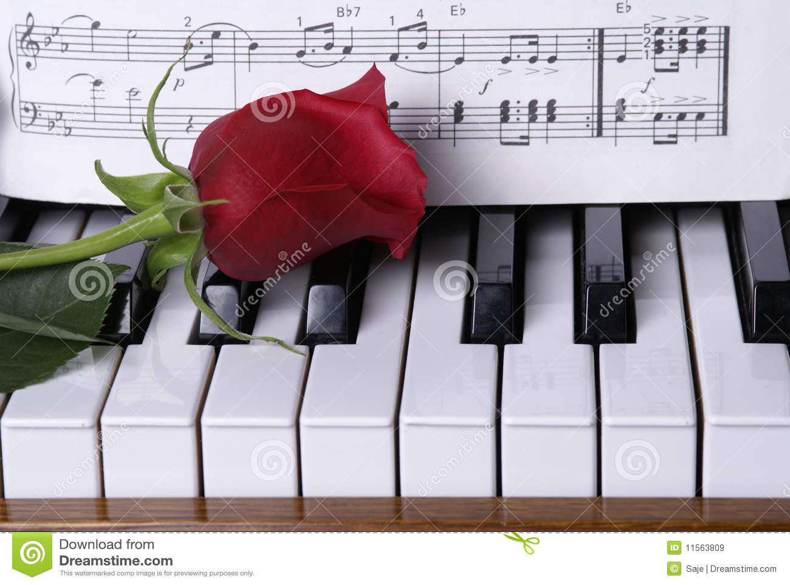 Fortepianowa czerwień wzrastał