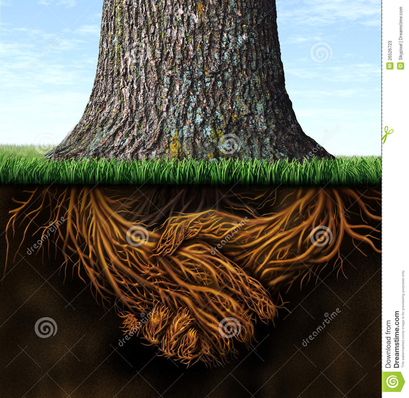 tree foundation quotes