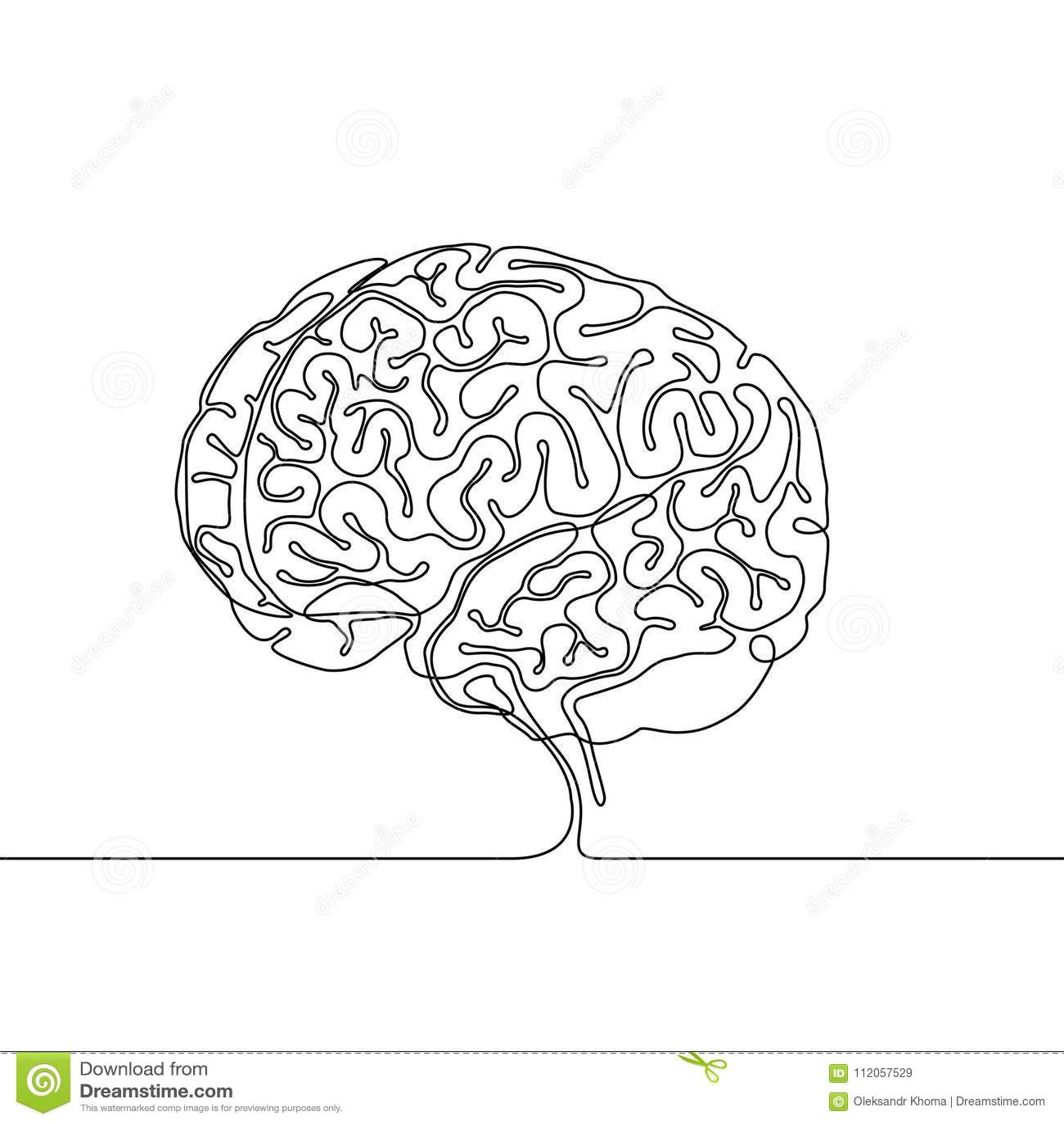 Fortlöpande linje teckning av en mänsklig hjärna med vindlingar och sulci