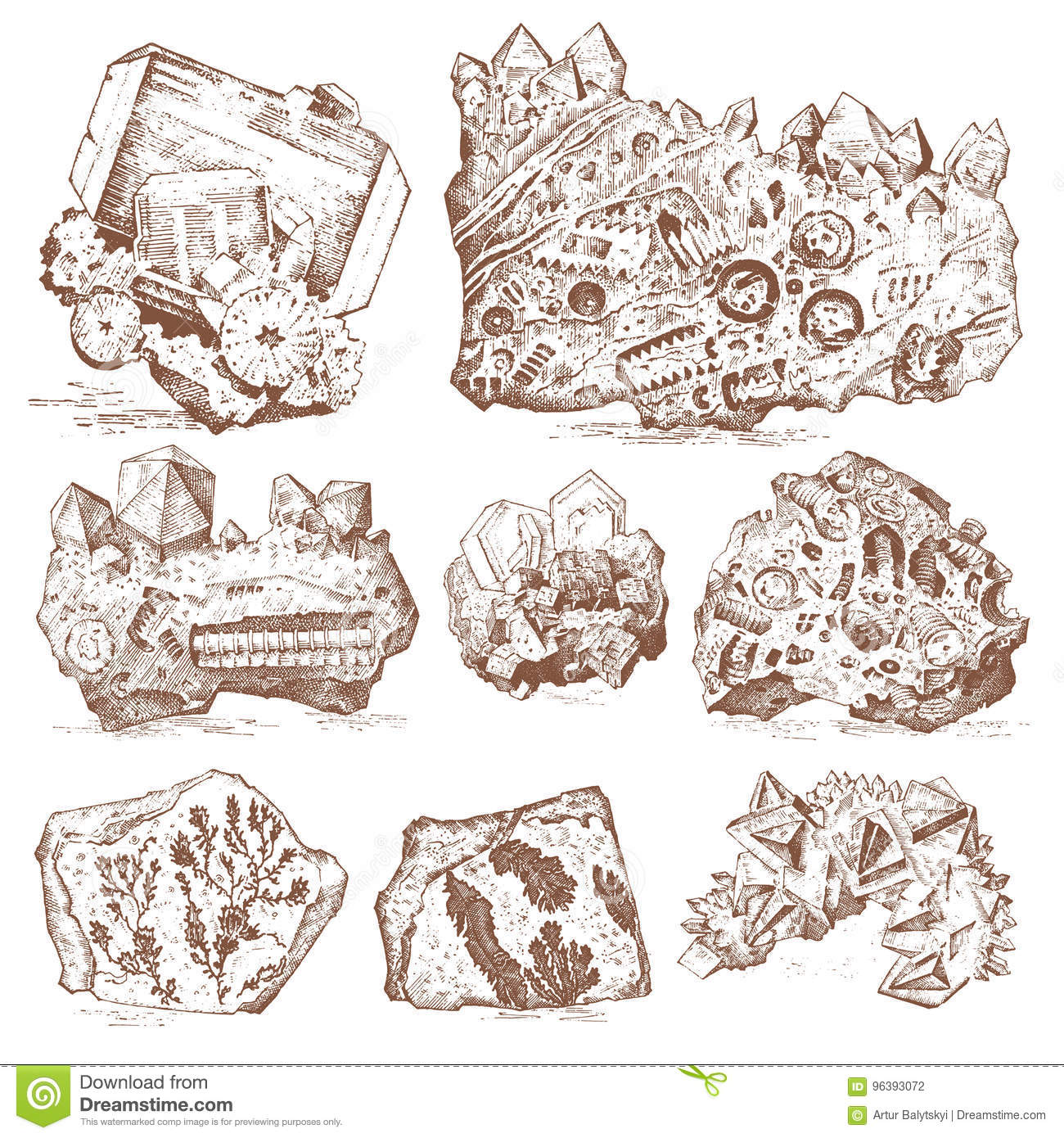 Fossilized plants, stones and minerals, crystals, prehistoric animals, archeology or paleontology. fragment fossils