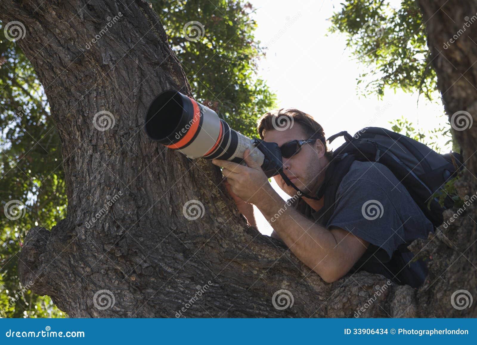 Fotógrafo Against Tree de los paparazzis