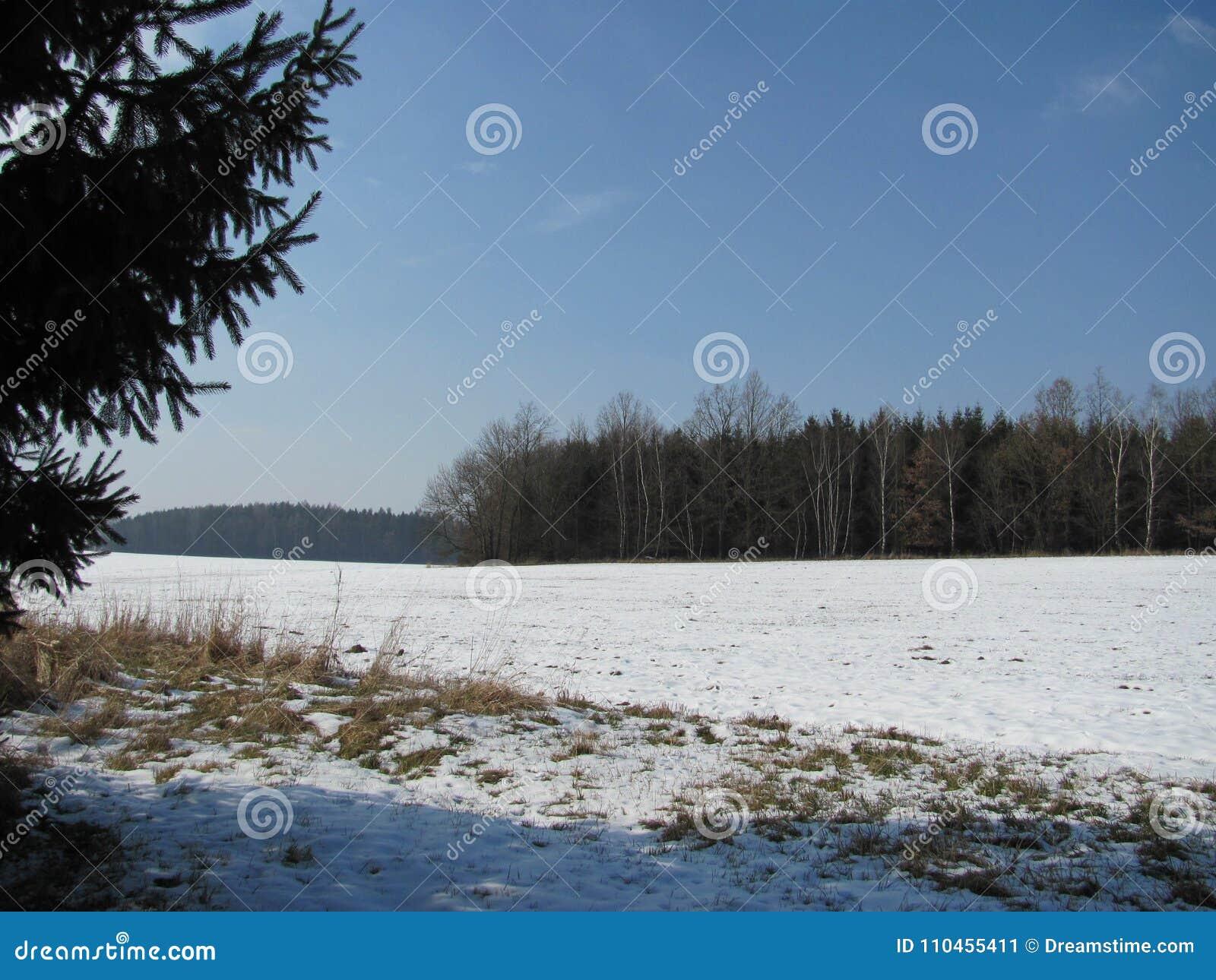 Foto av vinterlandskapet i Februari
