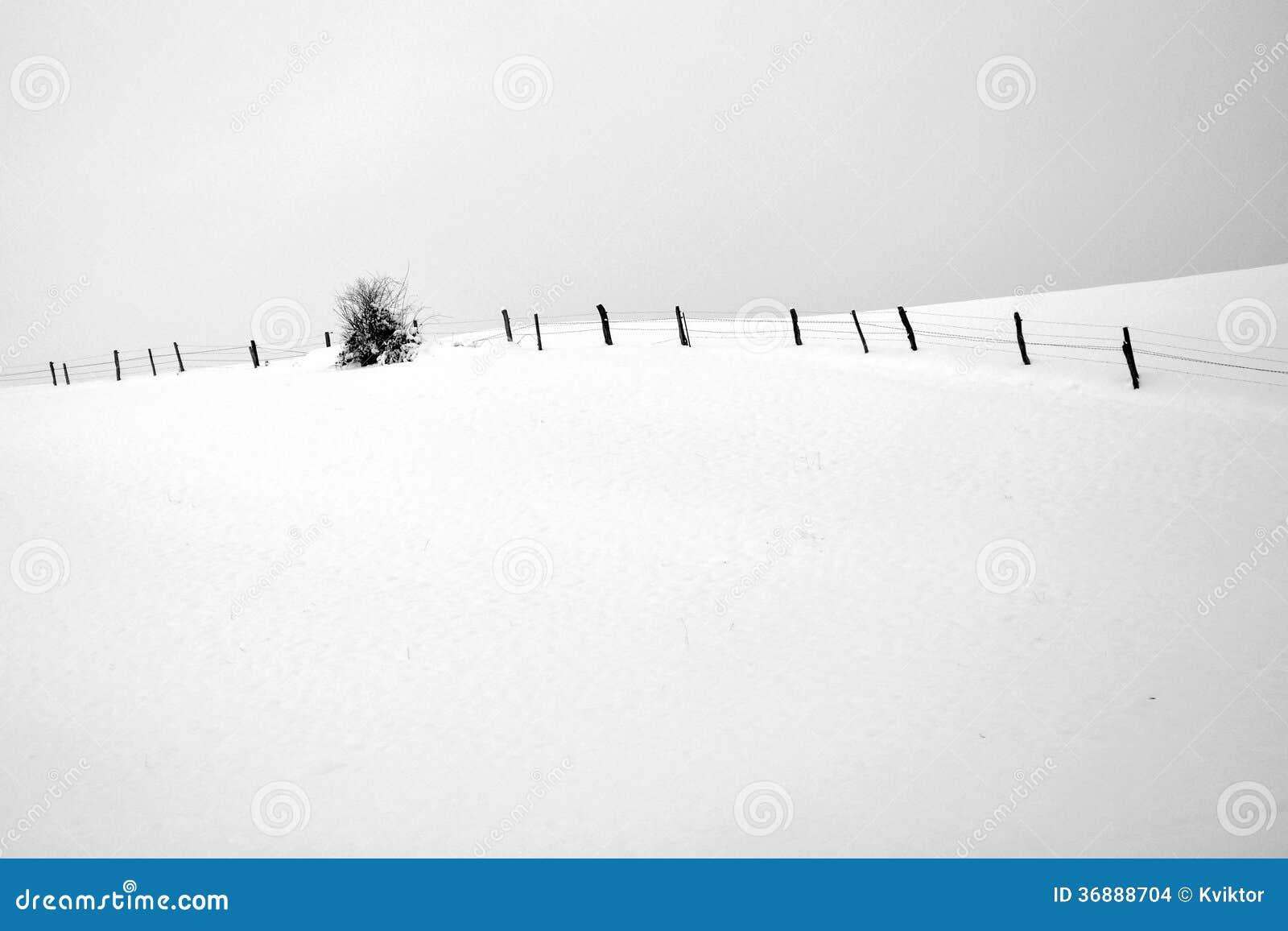 Download Foto In Bianco E Nero Del Paesaggio Di Inverno Fotografia Stock - Immagine di recinzione, artistico: 36888704