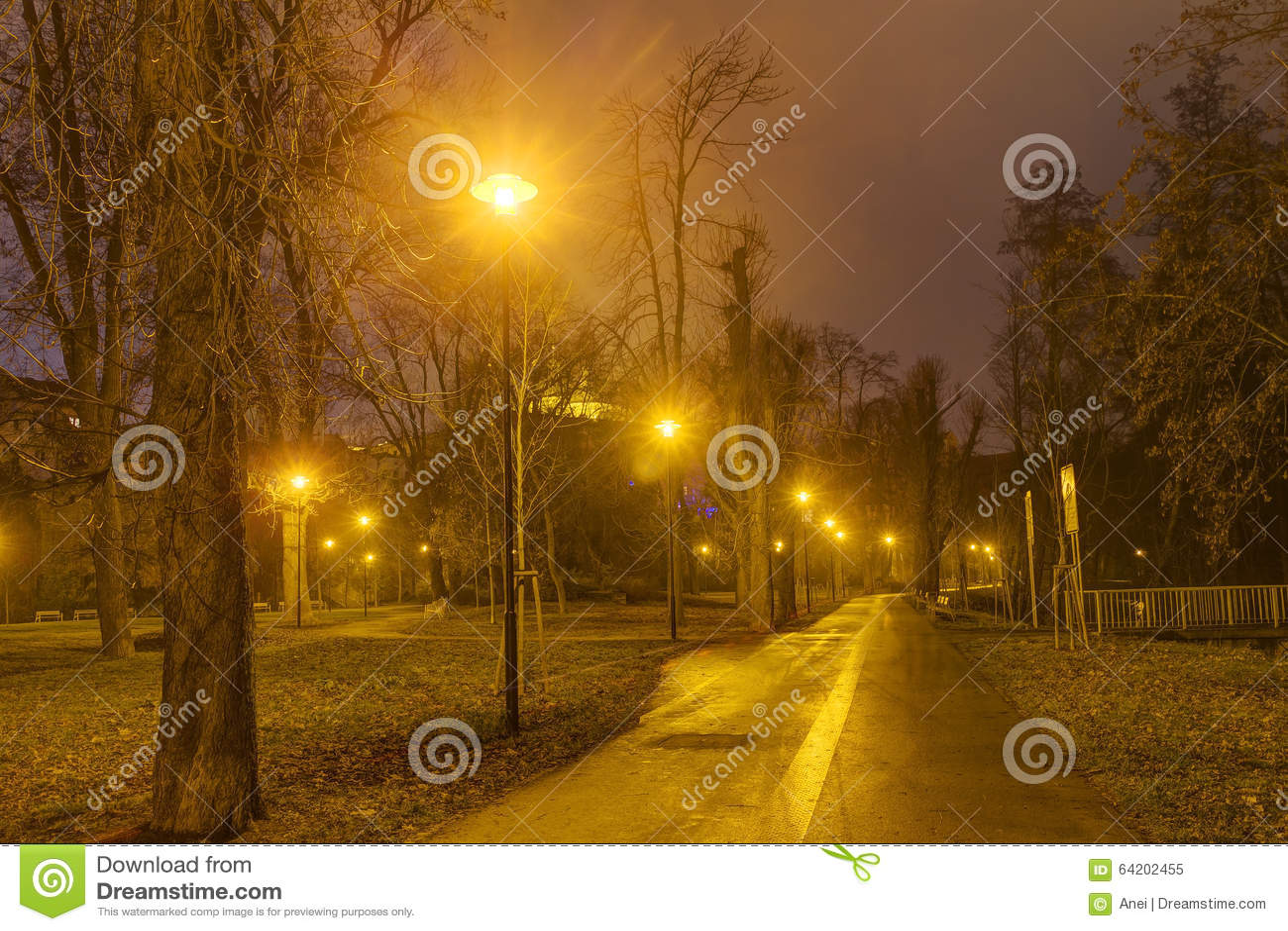 Foto de HDR del parque de la ciudad de Olomouc en invierno sin nieve en la noche, República Checa