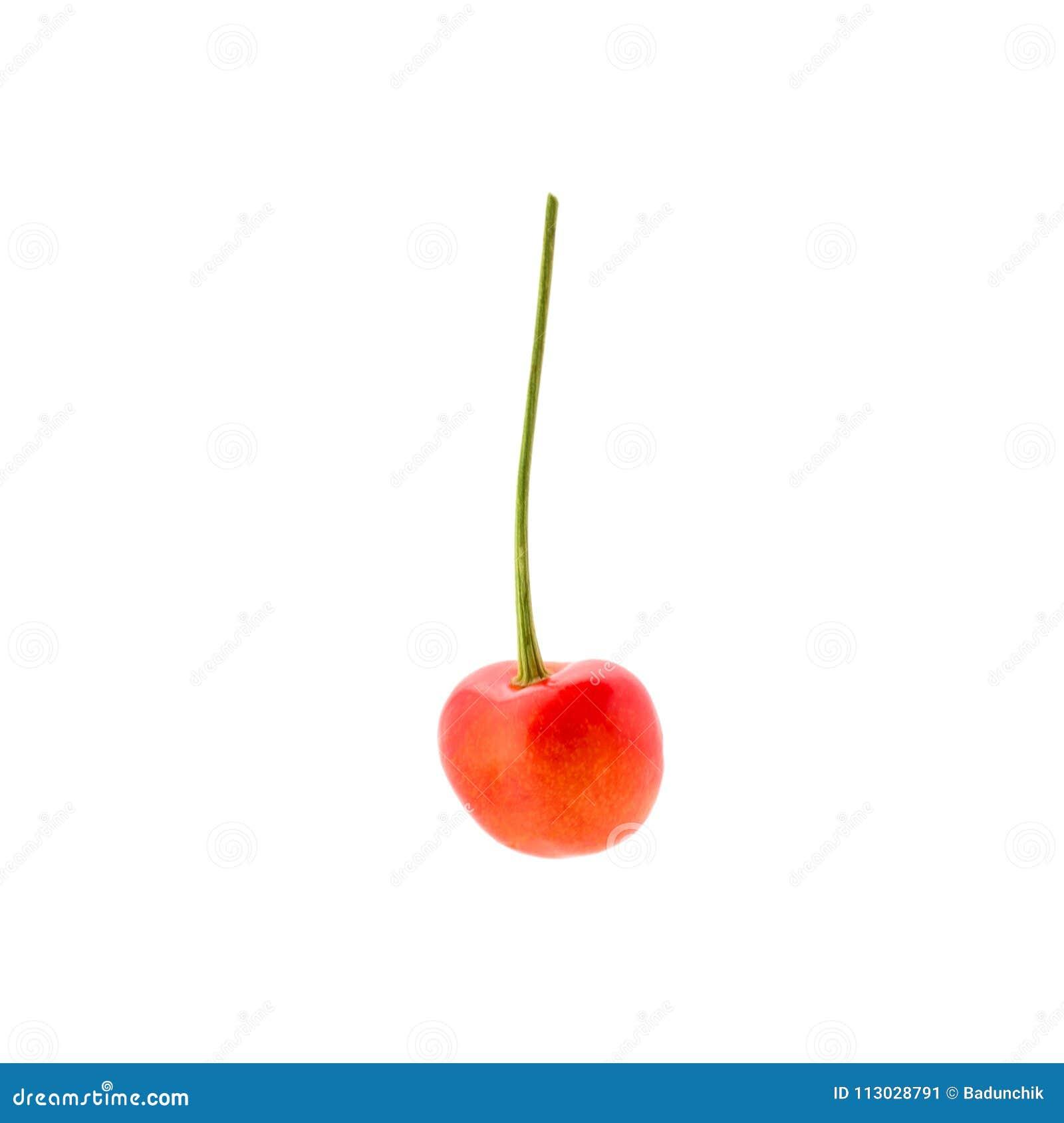 Foto de la cereza roja con la cola aislada en el fondo blanco