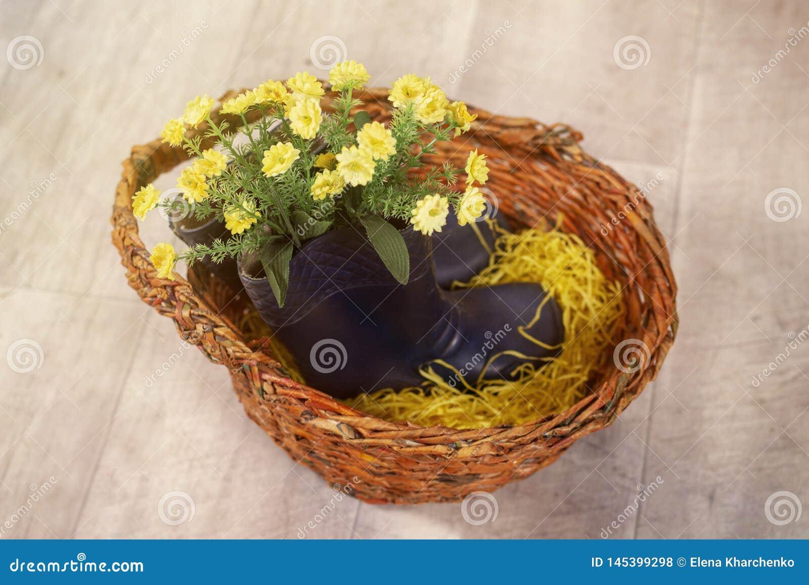 Foto de la primavera con las flores en las botas de los niños de goma en una cesta