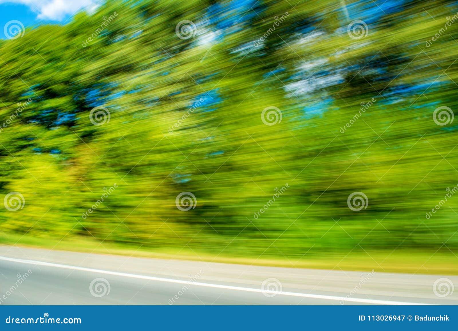 Foto de plantas verdes borrosas, fondo del movimiento