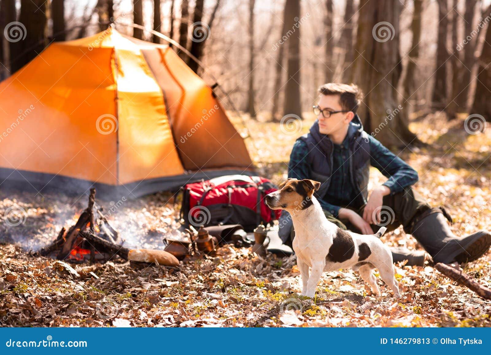 Foto de um turista com um c?o, descansando na floresta perto do fogo e da barraca alaranjada