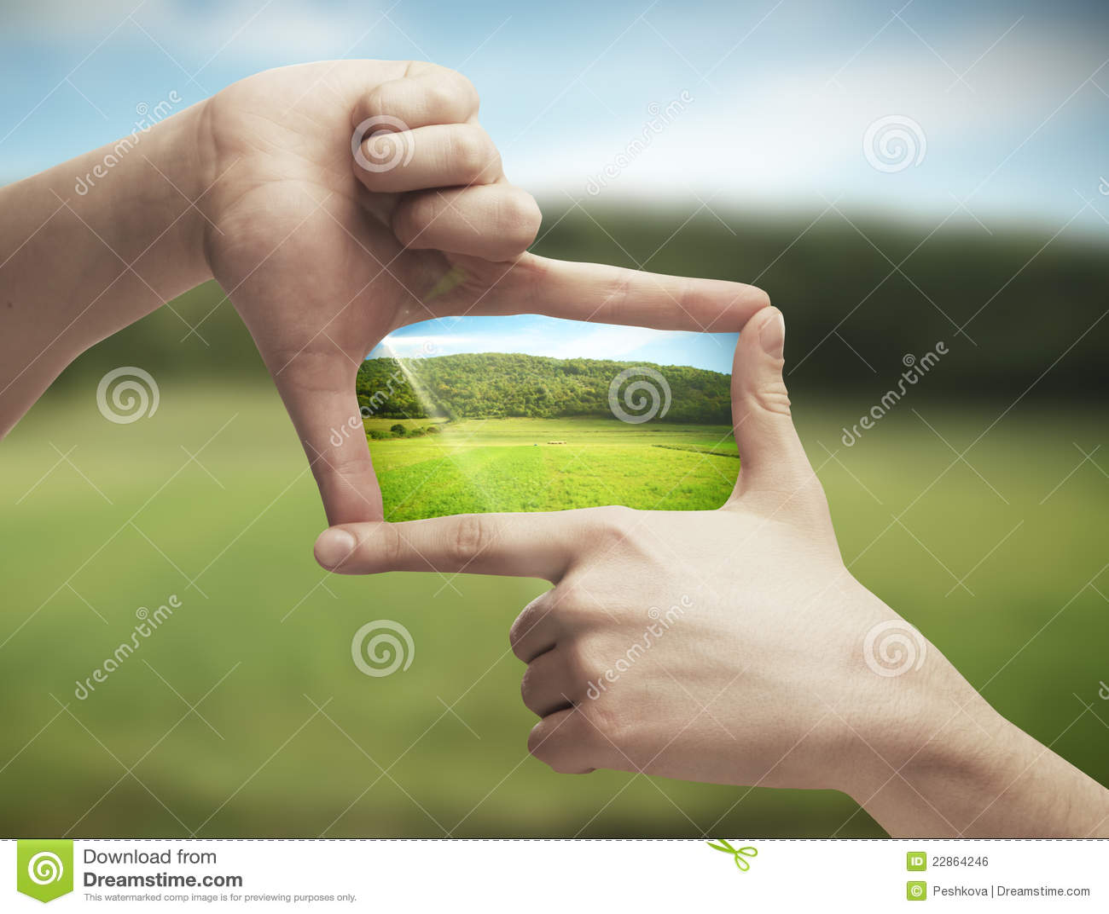 Foto del campo verde in mani