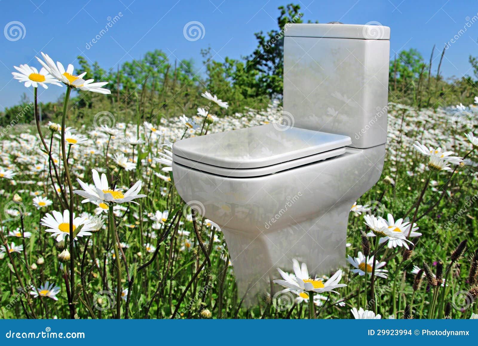 neue toilette der wiese stockbilder bild 29923994. Black Bedroom Furniture Sets. Home Design Ideas