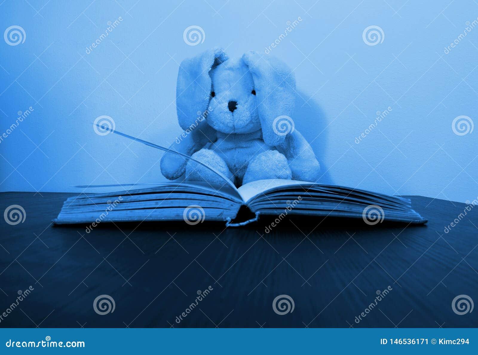 Foto entonada azul de un juguete de la felpa del conejo que se sienta detrás de un libro abierto