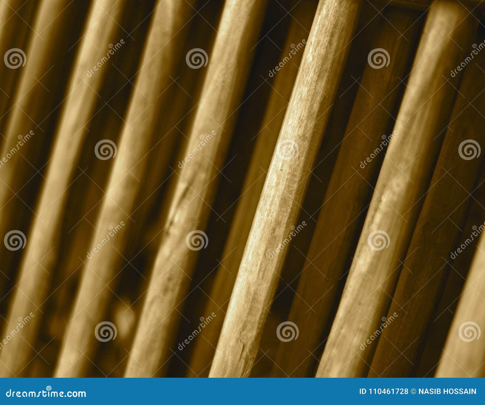 Foto för bakgrund för träobjekt för rund form abstrakt