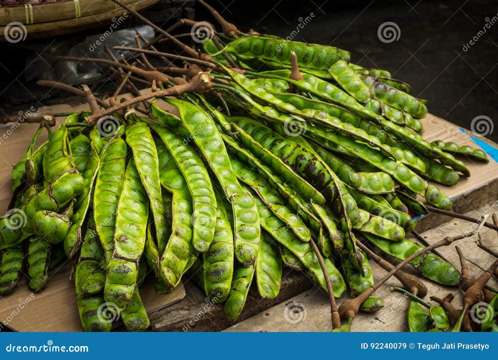Foto för Petai exotiskt matböna som tas i bogor jakarta indonesia
