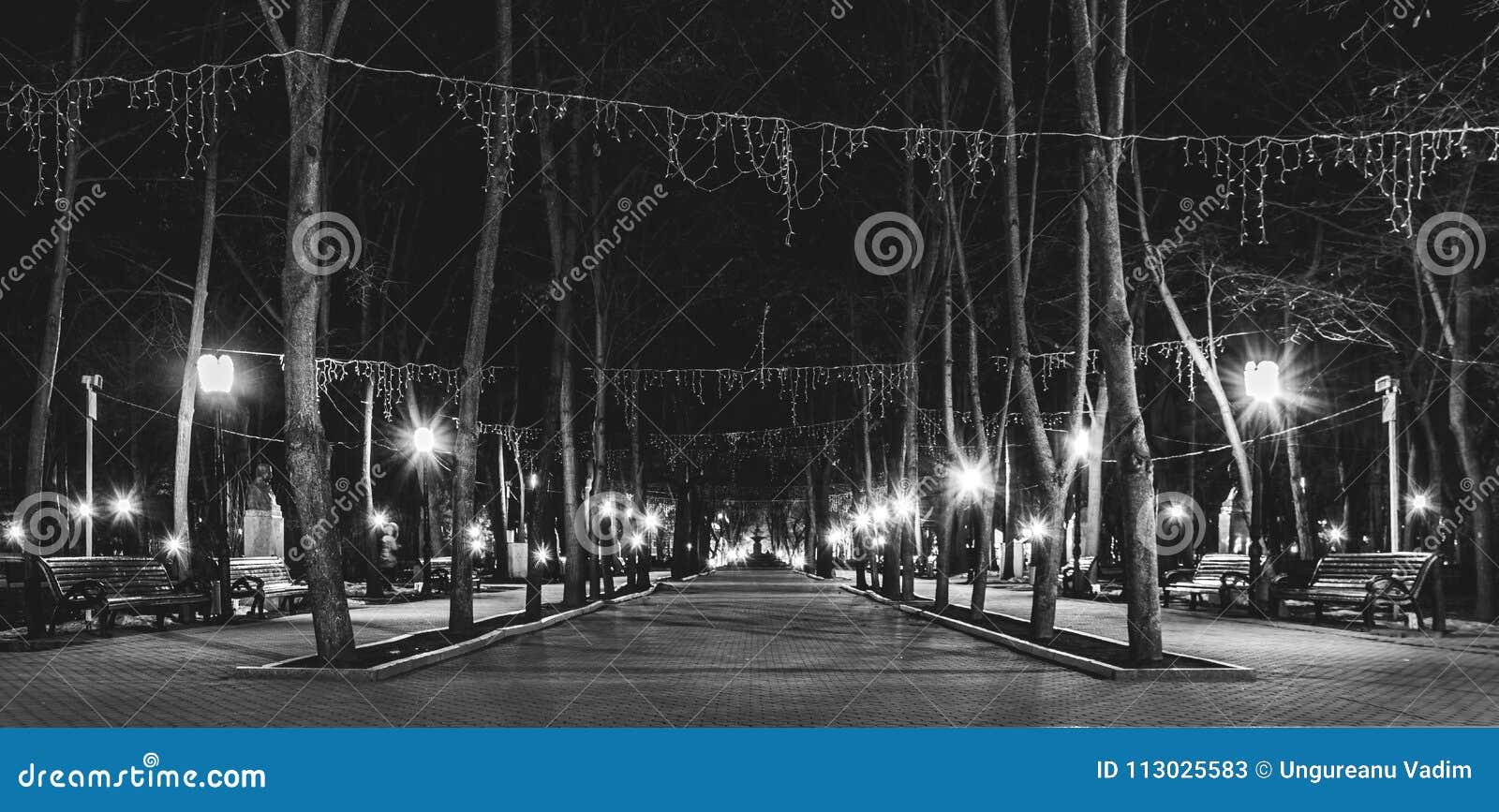 Foto panorámica hermosa del callejón de obras clásicas en Chisinau, el Moldavia