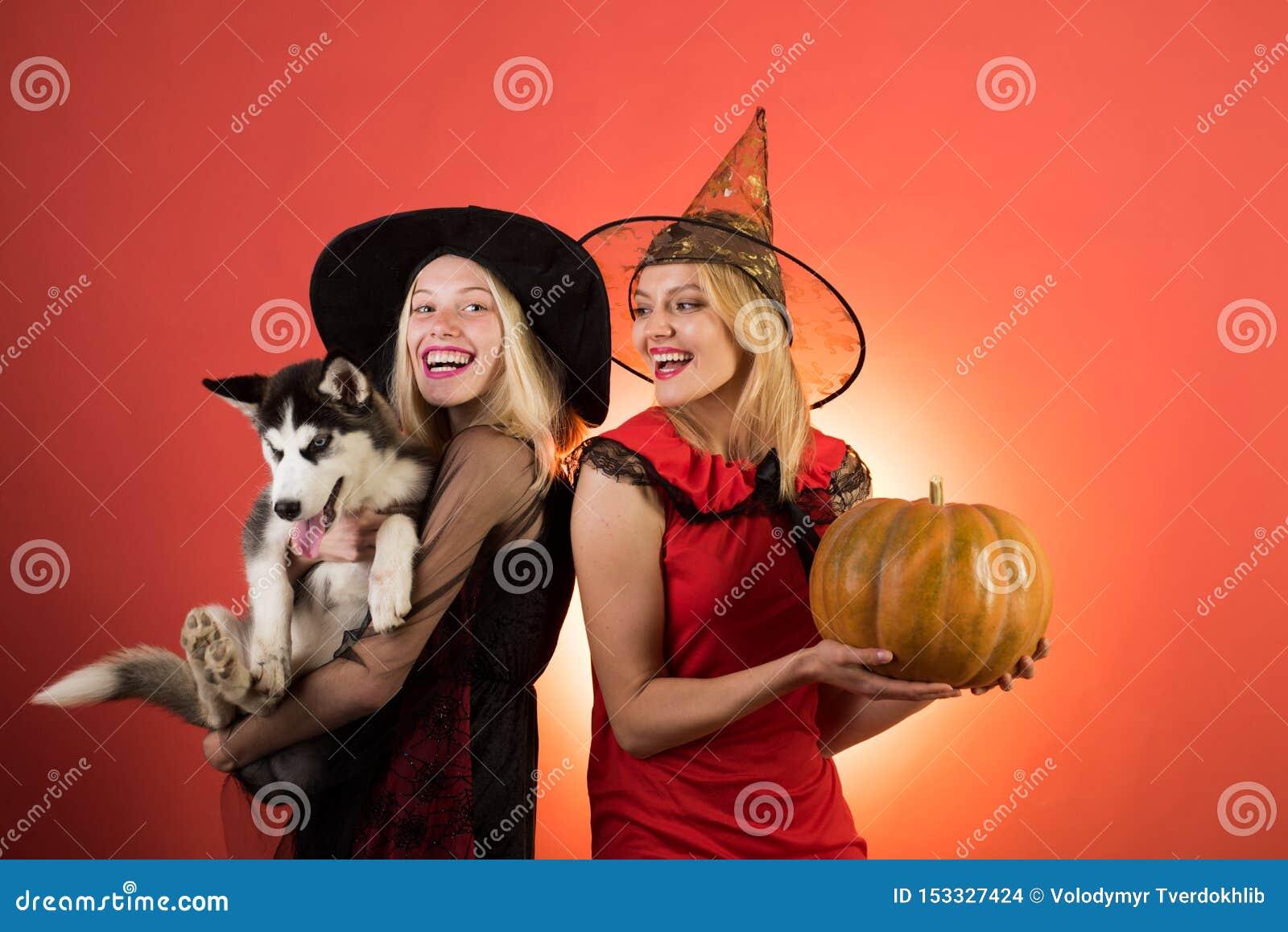 Foto van twee jonge wijfjes met Halloween-pompoen en weinig Schor hond, hebbend pret Twee gelukkige jonge vrouwen in zwarte en