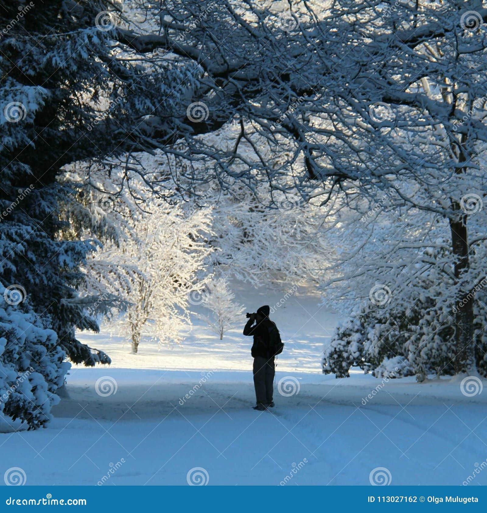 Fotografía de la nieve