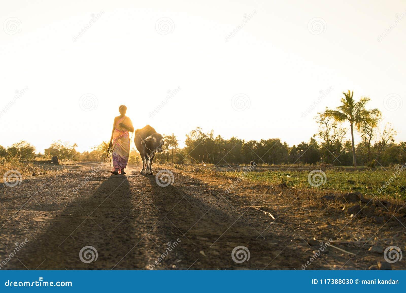 Fotografía del pueblo del nanu del tamil de la India de la fotografía de la calle de Salem