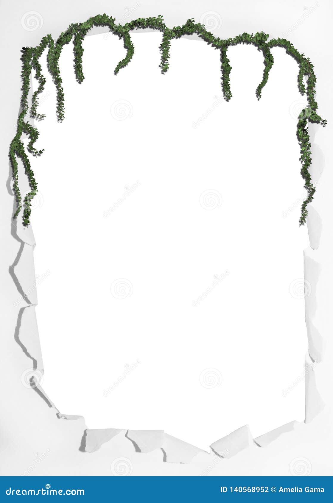 Fotografía real del marco con formato del png