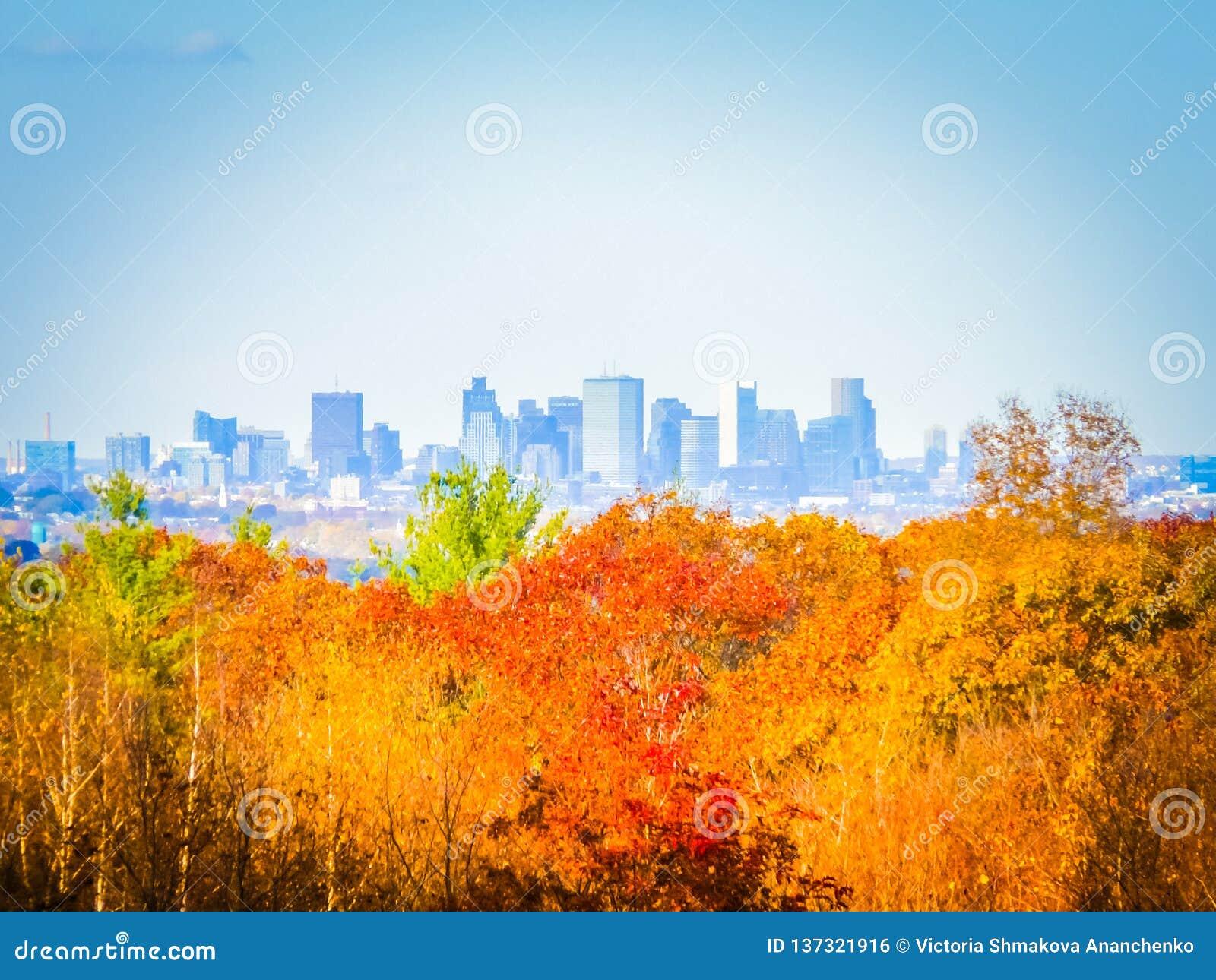 Fotografia da queda da skyline de Boston em um dia ensolarado