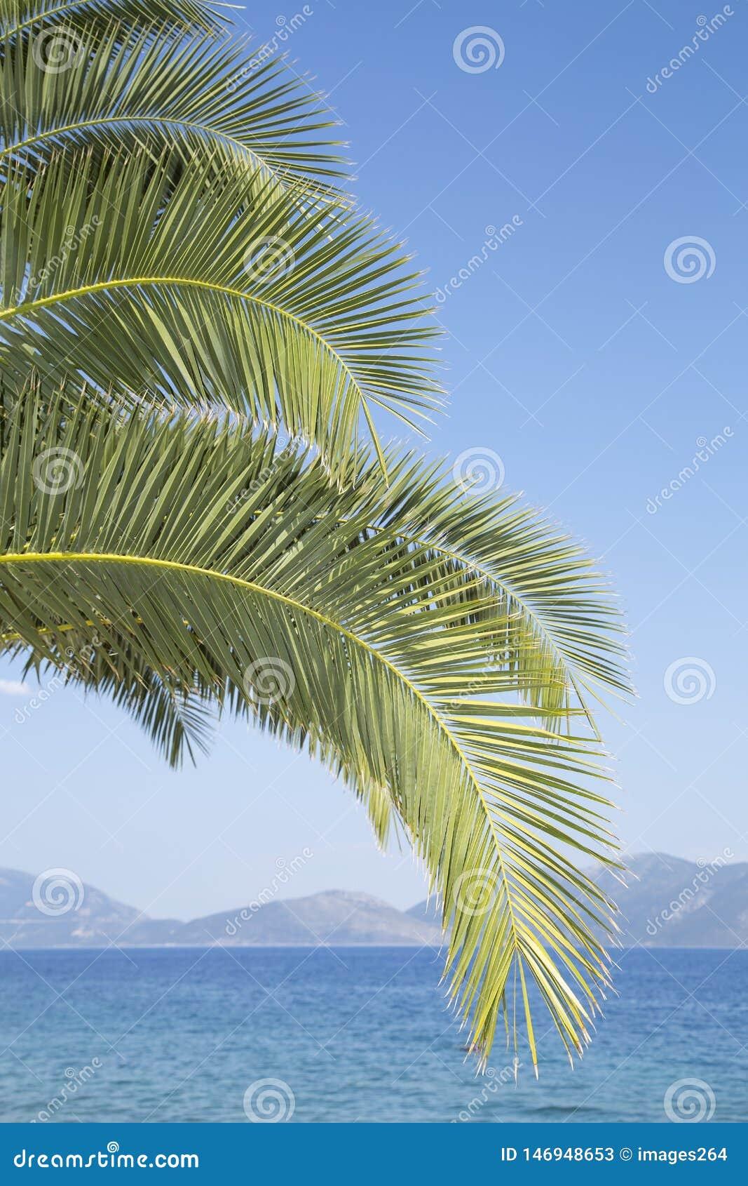 Fotographie eingelassene Mittelmeerinsel Korsika