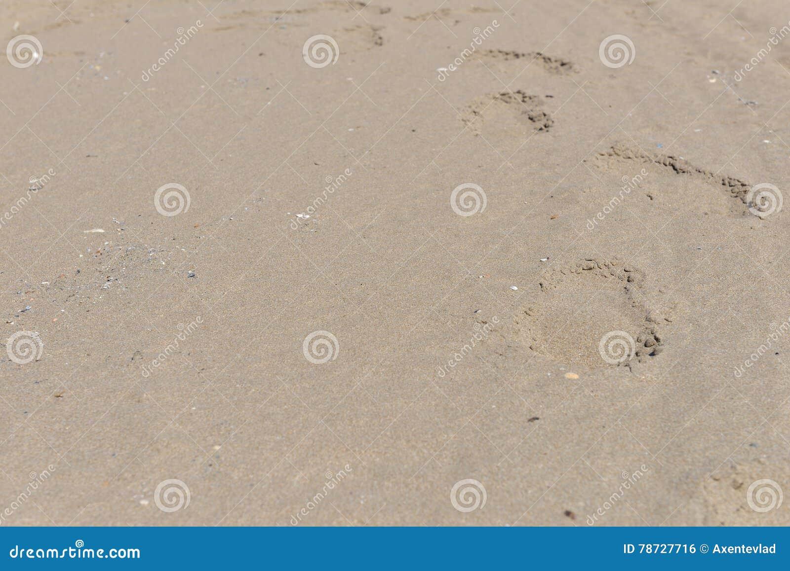 Fotspår i sanden på den Blacl havskusten Conc strandlopp