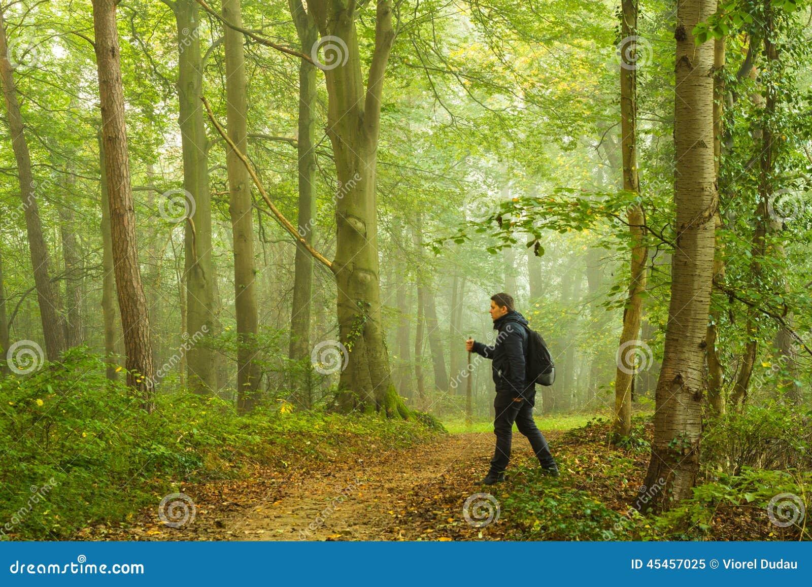 Fotvandra för skog