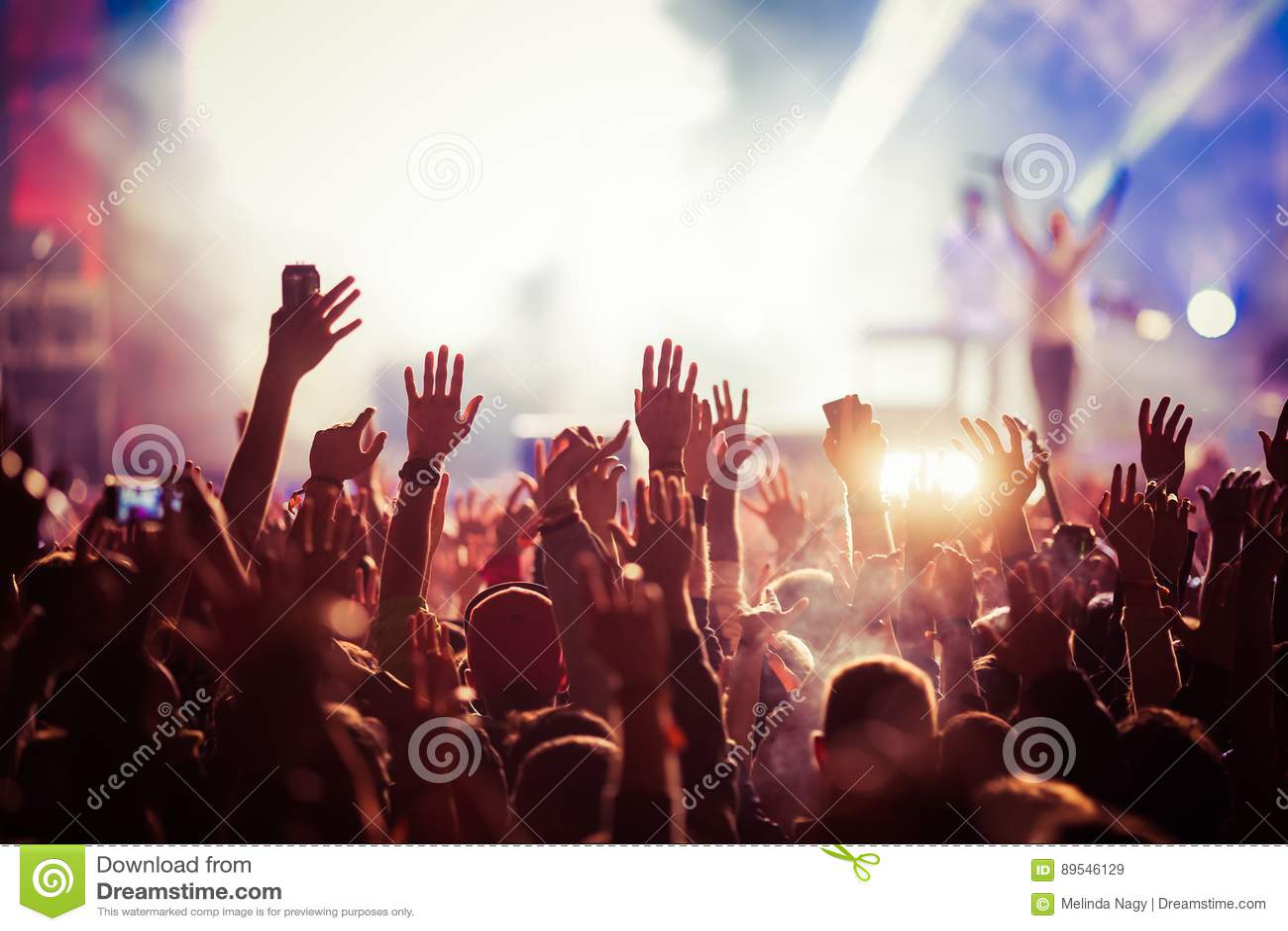 Foule au concert - festival de musique d été