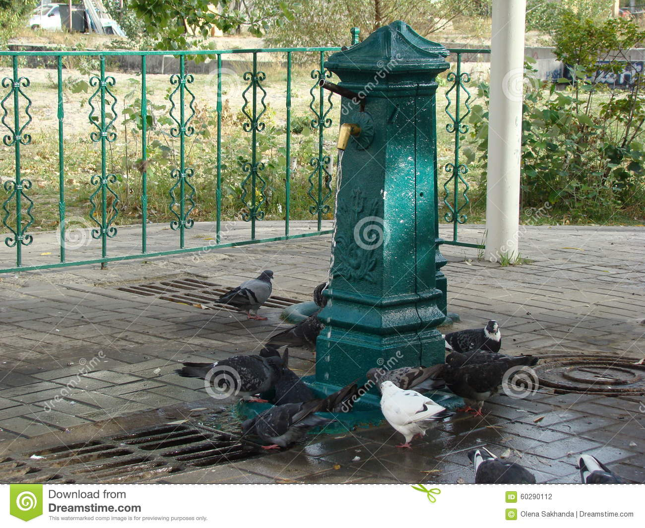 Fountain Of Drinking Water Supply In Kiev And Doves Stock