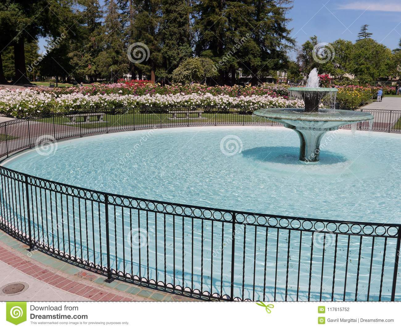 Fountain With Round Basin In San Jose Rose Garden