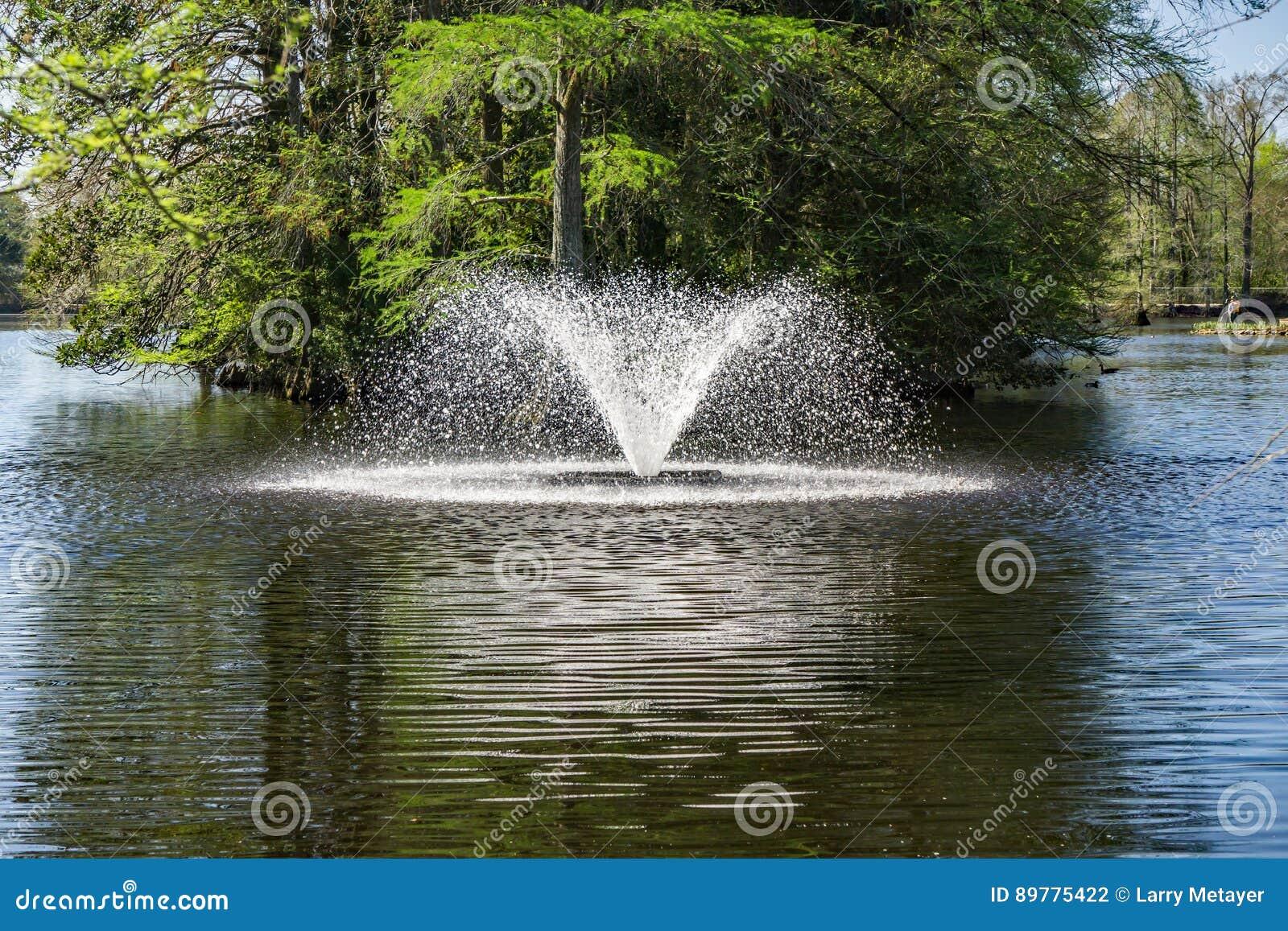 swan lake iris gardens sumter sc hours fasci garden