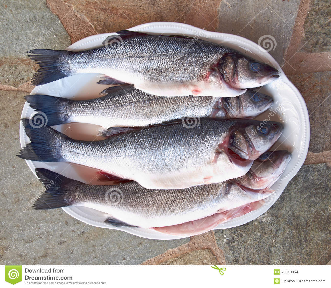 Four bass fish ready to cook stock images image 23819054 for Bass fish cooking